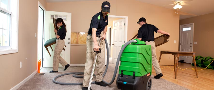 Arlington, VA cleaning services